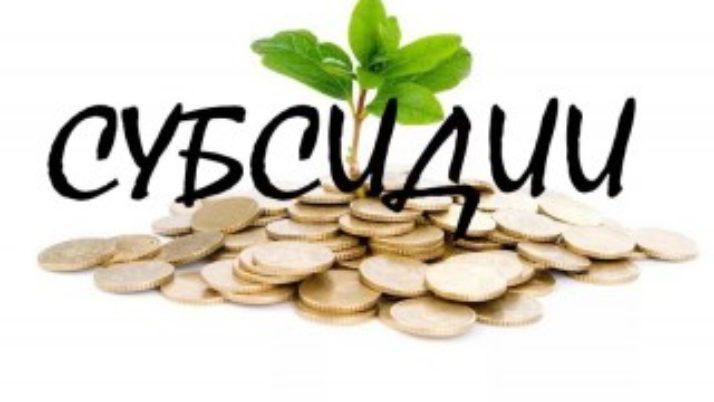 Затратные субсидии уменьшились на 18% — сумма НДС
