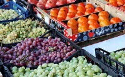 Разработан проект типового госконтракта на поставку продуктов питания