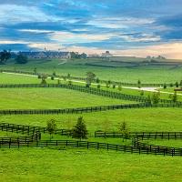 ФНС России разъяснила, в каких случаях нужно платить НДФЛ при продаже части земельного участка