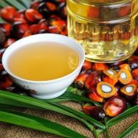 Отменена льгота по НДС для пальмового масла