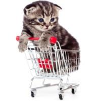 Утвержден перечень допустимых случаев использования домашних животных в предпринимательской деятельности