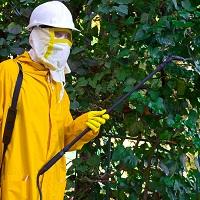 ВС РФ: медлицензия нужна дезинфекторам, занятым противоклещевой обработкой озелененных территорий